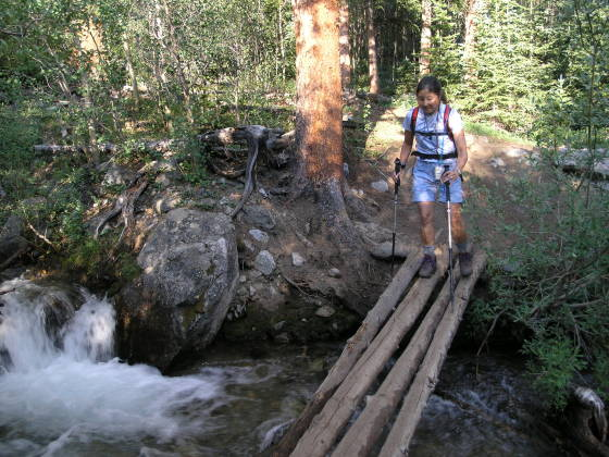 Crossing the log bridge