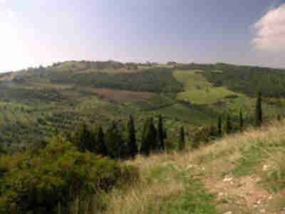 The hillside outside of Castiglione d'Orcia