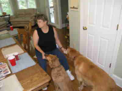 "Elaine feeding Casey and Bailey ""Frosty Paws"""