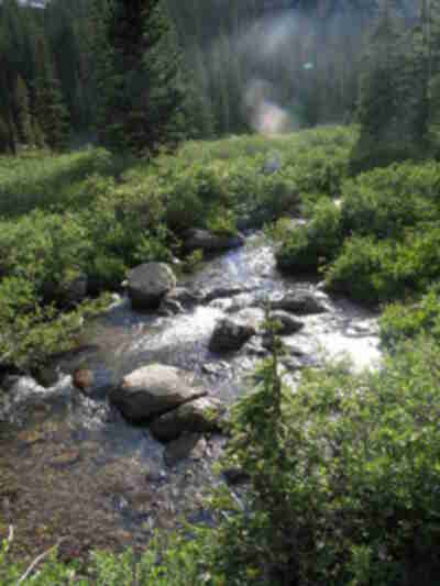The stream nearby camp