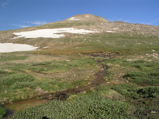 James Peak rises above the alpine meadow