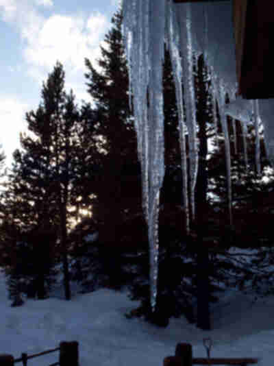 Icicles from the roof